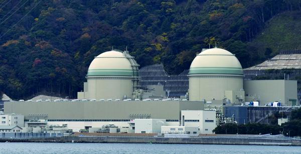 Le redémarrage d'un des réacteurs de la centrale de Takahama le 29 janvier a suscité la colère. (DR)
