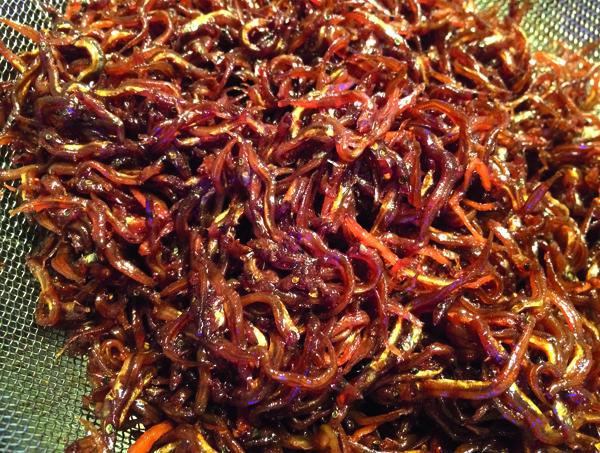Ikanago no kugini, une recette de printemps, spécialité de l'ouest de l'archipel.