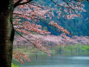 barrage-haji-akitakata-hiroshima-japon