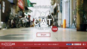chat-onomichi-japon-2