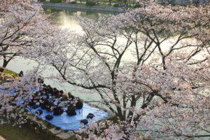 chateau-hiroshima-pique-nique-salaries-japon
