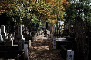 Tokyo, November 15 2012 - Zoshigaya cemetery at fall.