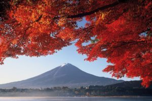 destination-mont-fuji-japon