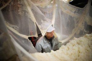 ouvrier-brasserie-riz-sake-katsuyama-shuzo-sendai-japon