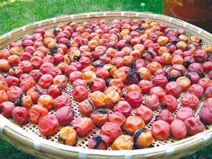 prunes-japon