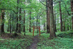 recit-les-yamabushi-yamagata-japon