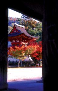 temple-fudoin-hondori-japon