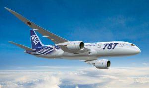 ANA 787 Special Livery K65333-01