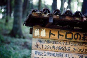 Tokyo, October 6 2011 - In one of the totori no mori (totoro's forest), bought by the Totoro no furosato (Totoro's homeland) fundation in Saitama prefecture, 40km from Tokyo.