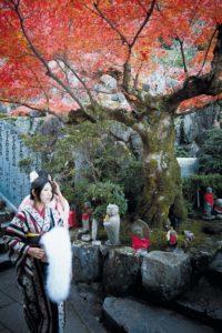 Miyajima, November 26 2011 - Daishoin temple.