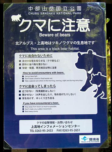 Parmi la faune, les ours suscitent quelques craintes. (Johann Fleuri pour Zoom Japon.)