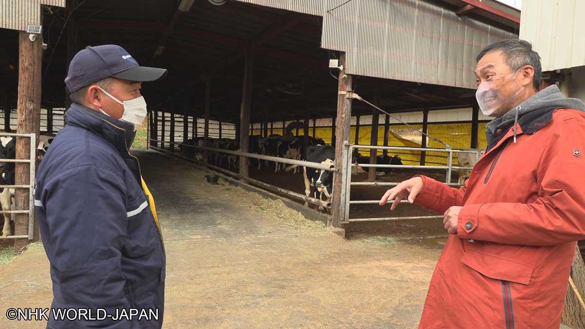 nhk world_Japan-Ken Watanabe 2021  producteur laitier
