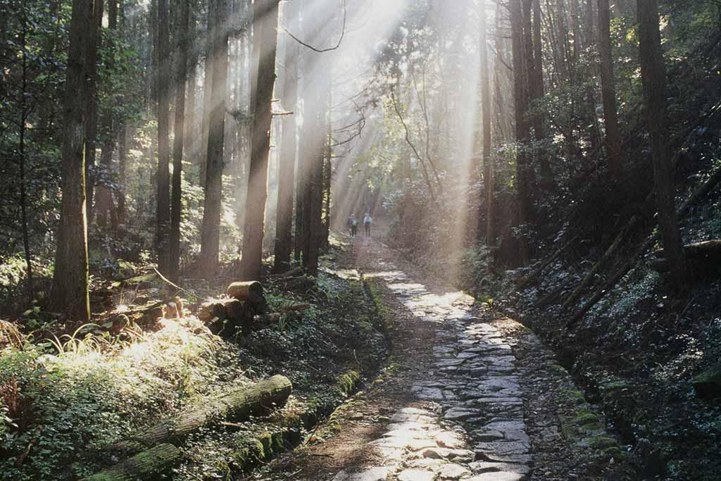 Japon, yamaguchi Hagi Okan